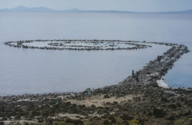 Got to the spiral jetty (1 of 1)