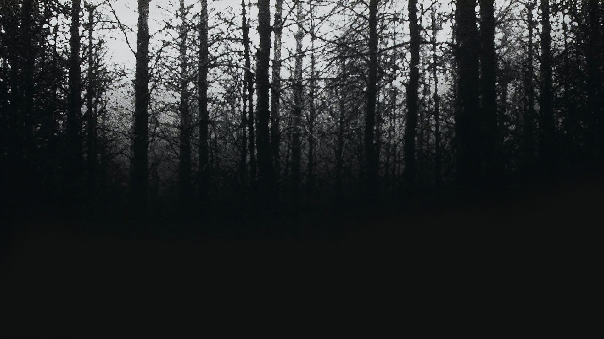 the-blair-witch-project1