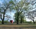 02-BB-landscape-architecture_waldpark_potsdam