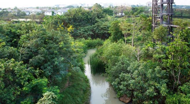 07-by-rungkit-charoenwat